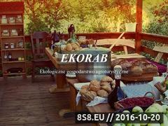 Miniaturka domeny www.ekorab.pl