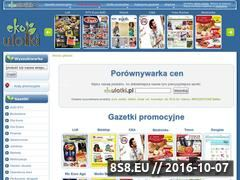 Miniaturka domeny ekoulotki.pl