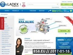 Miniaturka domeny eladex.com.pl