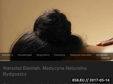 Zrzut strony Hirudoterapia, larwoterapia, medycyna naturalna i akupunktura - Warsztat Elemiah