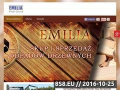 Miniaturka domeny emilia-odpadydrzewne.pl