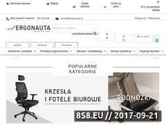 Miniaturka domeny www.ergonauta.pl