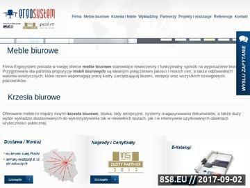 Zrzut strony Meble biurowe Ergosystem.pl