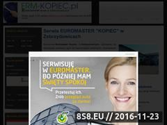 Miniaturka domeny www.erm-kopiec.pl
