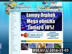 Miniaturka domeny erybka.pl