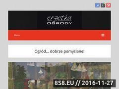 Miniaturka domeny erzetka.pl