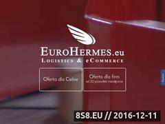 Miniaturka domeny www.eurohermes.pl