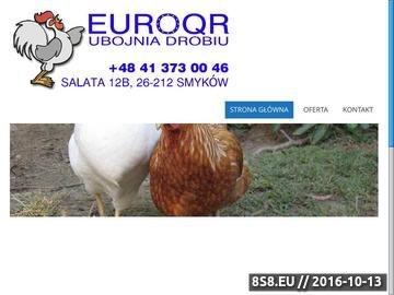 Zrzut strony EUROQR - podroby