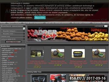 Zrzut strony Sklep internetowy ADDER