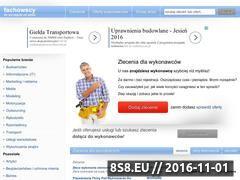 Miniaturka domeny www.fachowscy.pl