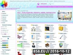 Miniaturka domeny falco-jc.pl