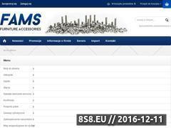Miniaturka domeny fams.com.pl