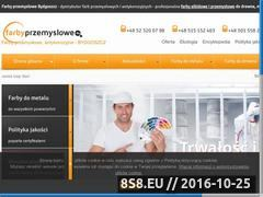 Miniaturka domeny farbyprzemyslowe.eu