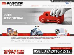 Miniaturka domeny faster-bruk.pl