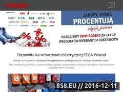 Miniaturka domeny www.fega.com.pl