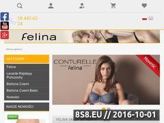 Miniaturka domeny felina-sklep.pl