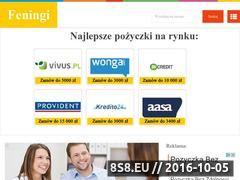 Miniaturka domeny feningi.pl