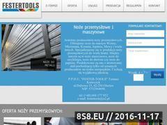 Miniaturka domeny festertools.pl