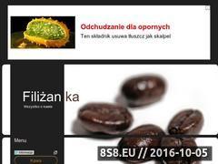 Miniaturka domeny filizanka.cba.pl