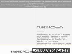 Miniaturka domeny www.finacea.pl
