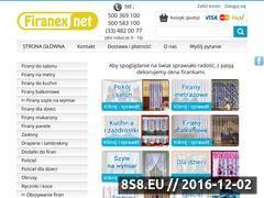Miniaturka domeny firanex.net