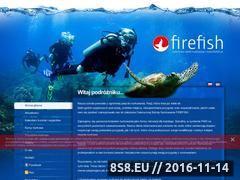 Miniaturka domeny www.firefish.pl