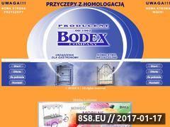 Miniaturka domeny www.firmabodex.com.pl