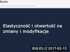 Miniaturka domeny www.firmabuster.pl