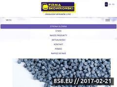 Miniaturka domeny firmaskowronski.com.pl