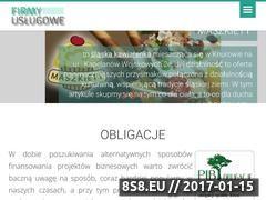 Miniaturka domeny www.firmyuslugowe.eu