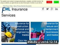 Thumbnail of FML Insurance Services Ltd Website