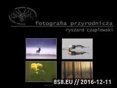 Miniaturka domeny www.fotoprzyroda.info