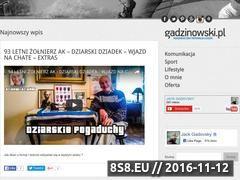 Miniaturka domeny www.gadzinowski.pl