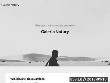 Zrzut strony Ekologiczne kosmetyki i środki czystości oferuje sklep Galeria-Natury