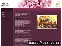 Miniaturka domeny galeriakwiatow.euroflorist.pl