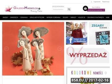 Zrzut strony Ceramika w sklepie internetowym