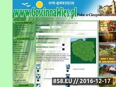 Miniaturka domeny www.goscinnawies.pl