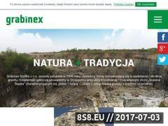 Miniaturka domeny grabinex.pl