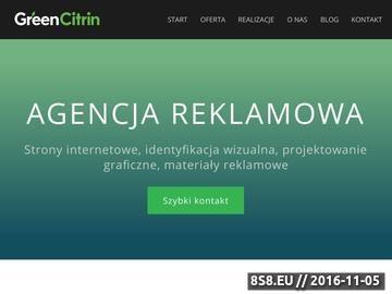 Zrzut strony Reklama internetowa i tradycyjna. Projektowanie graficzne i druk