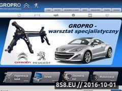 Miniaturka domeny www.gropro.com.pl