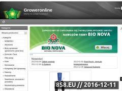 Miniaturka domeny groweronline.pl