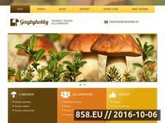 Miniaturka domeny grzybyhobby.pl