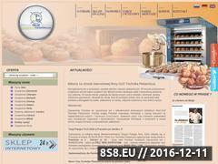 Miniaturka domeny www.guztech.com.pl