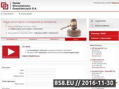 Miniaturka domeny www.gwg.pl