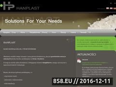 Miniaturka domeny www.hanplast.com