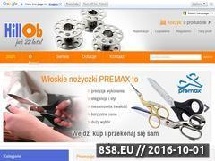 Miniaturka domeny hillob.pl