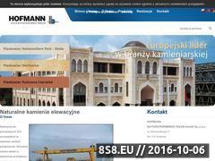 Miniaturka domeny hofmann.com.pl