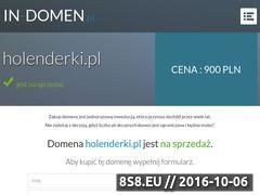 Miniaturka domeny www.holenderki.pl