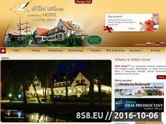 Miniaturka domeny hotel-amax.pl