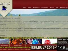 Miniaturka domeny www.hotel-jaskolka.pl